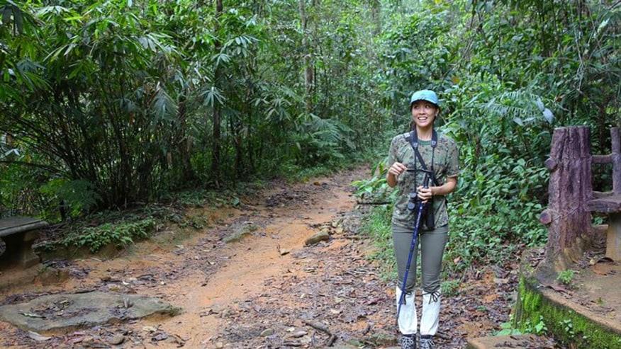Sinharaja Forest Reserve - Trekking