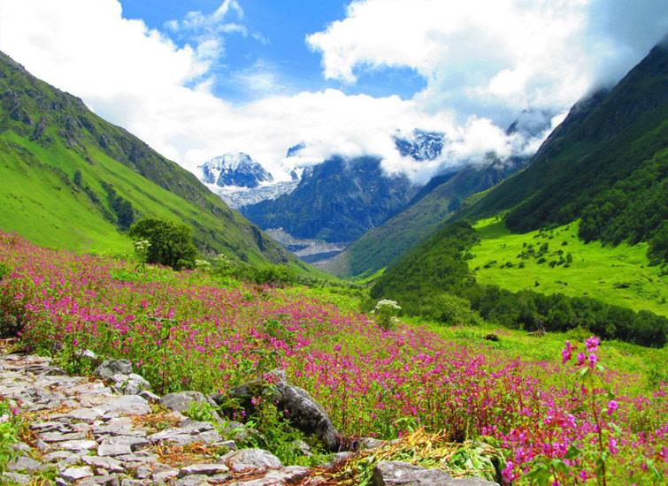 Valley of Flowers  - Chamoli-  Uttarakhand - India