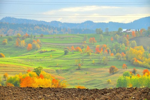Iza River Valley, the Heart of Maramures