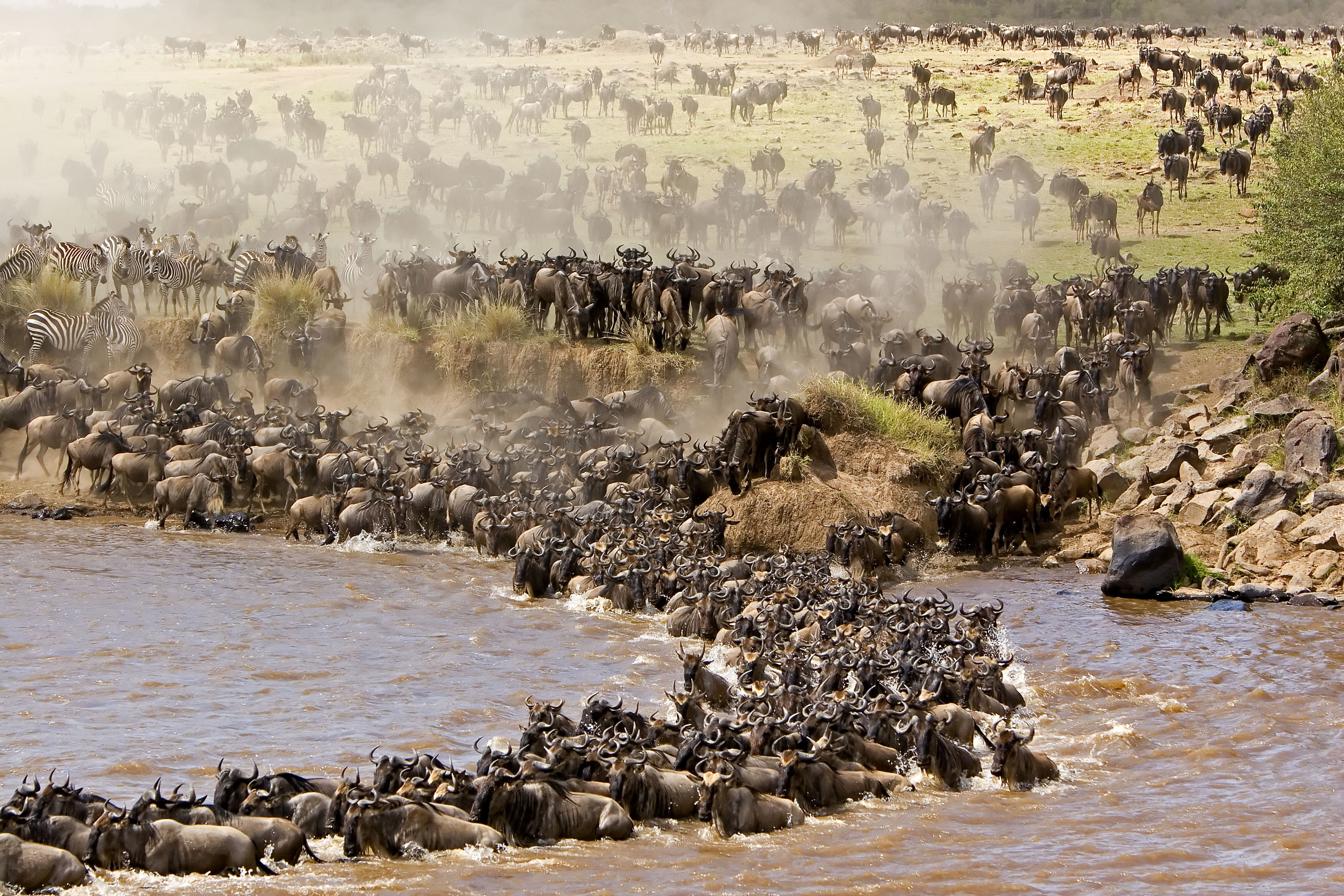 Facts about Maasai Mara National Reserve