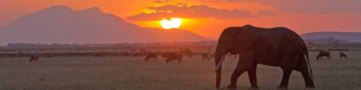 Leyaricio-Tours-&-Safaris-in-Namibia