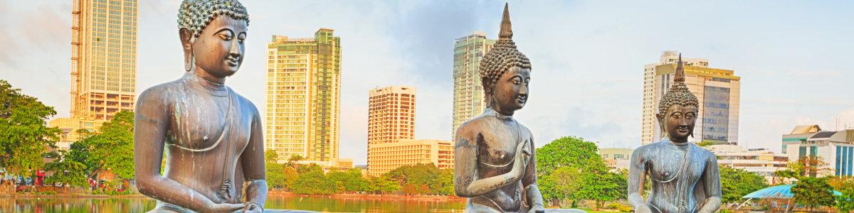 ChinSu-Tours-in-Sri-Lanka