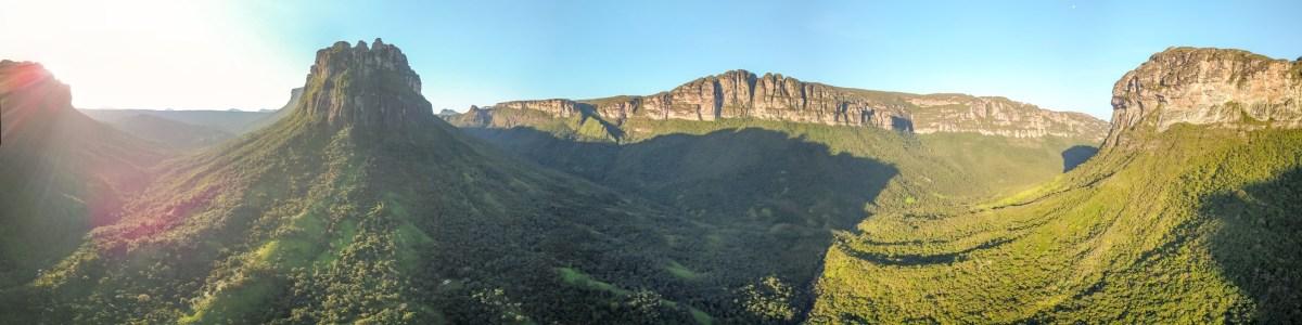 Tatu-Na-Trilha-in-Brazil