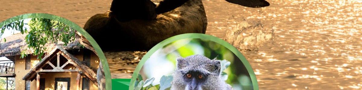 WAYNE-B-ECO-TOURS-in-Malawi