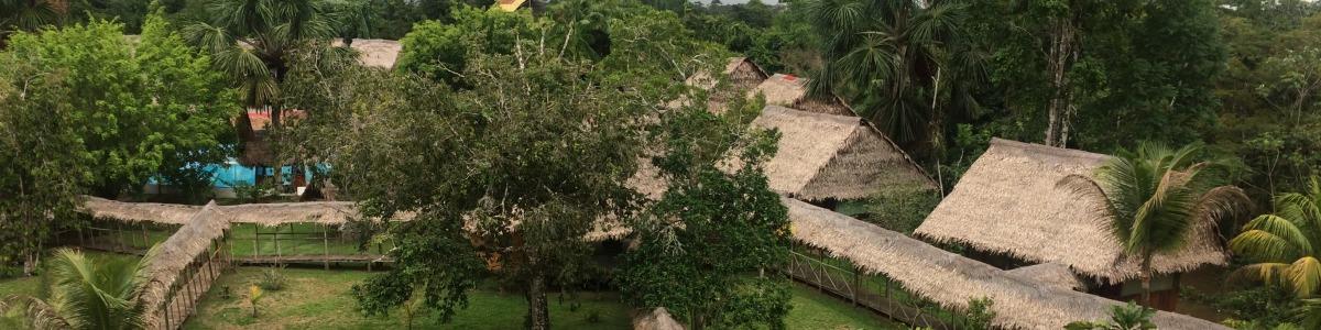 Wild-Amazon-Experience-in-Peru