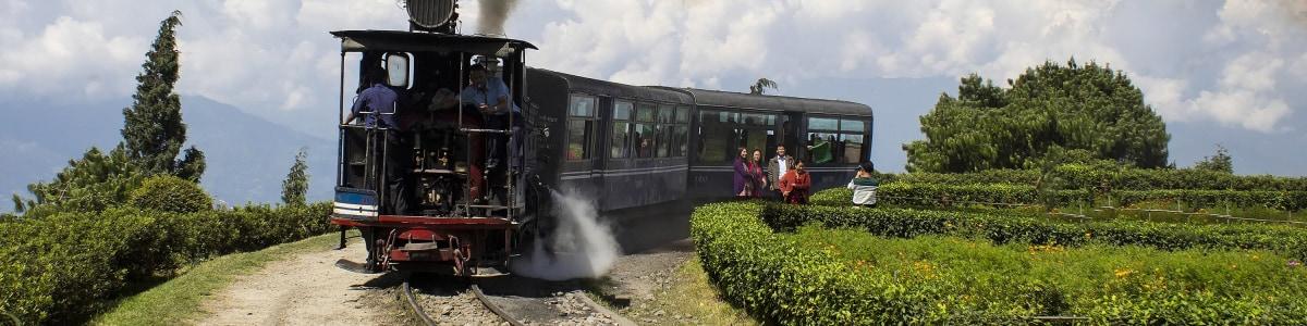 darjeeling-tour-guide