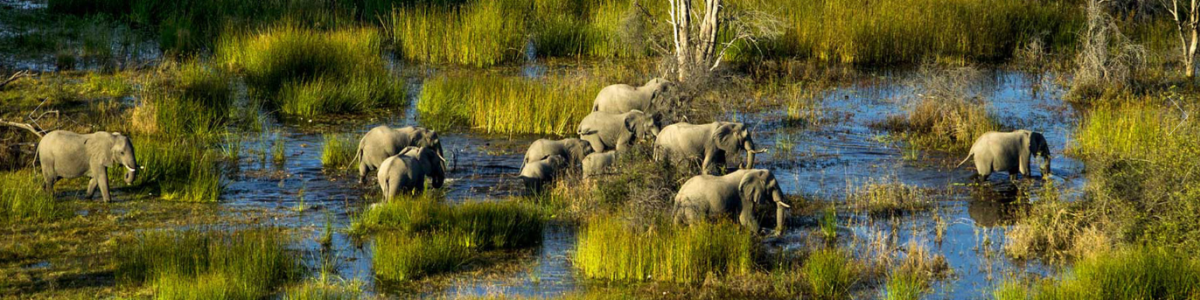 Kalahari-Culture-&-Nature-Safaris-in-Botswana