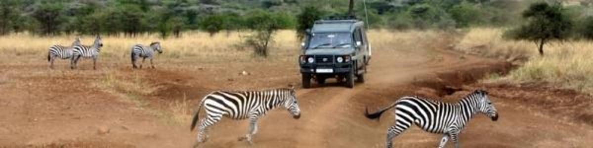 Experience-Zanzibar-Tours-&-Safaris-in-Tanzania