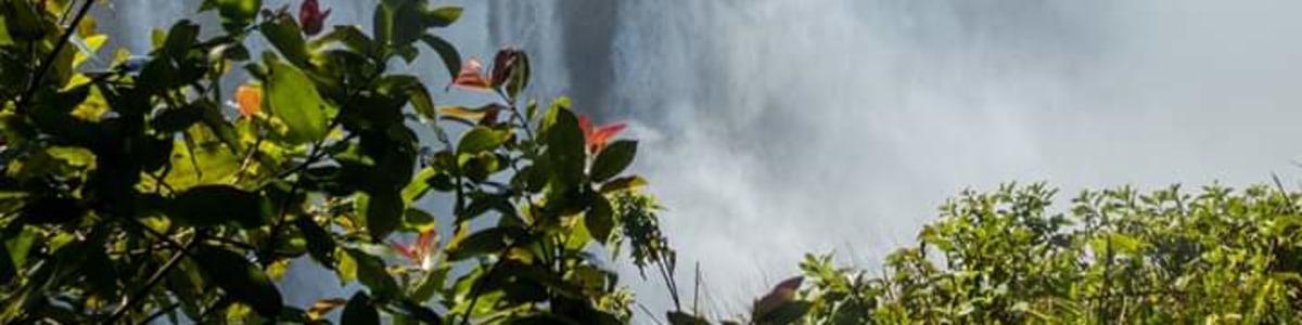 Victoria-Falls-Adventures-And-Safaris-in-Zambia