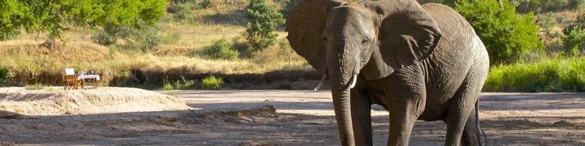 Orange-Adventure-Tours-And-Safaris-in-Kenya