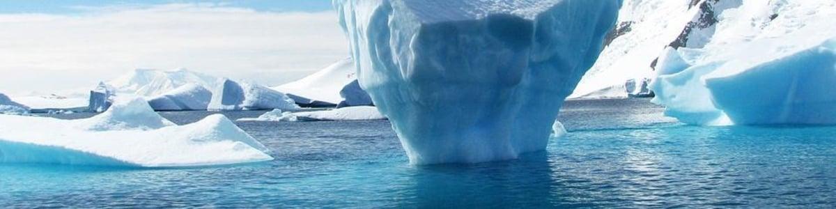 antarctica-tour-guide