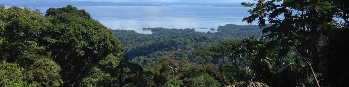 paramaribo-tour-guide