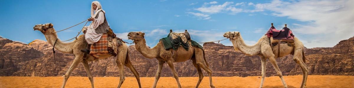 Petra-Nights-Tours-in-Jordan