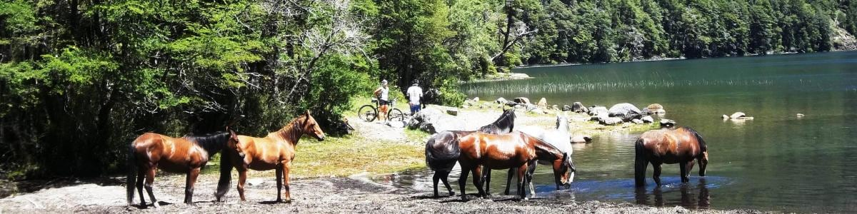 sanmartindelosandes-tour-guide