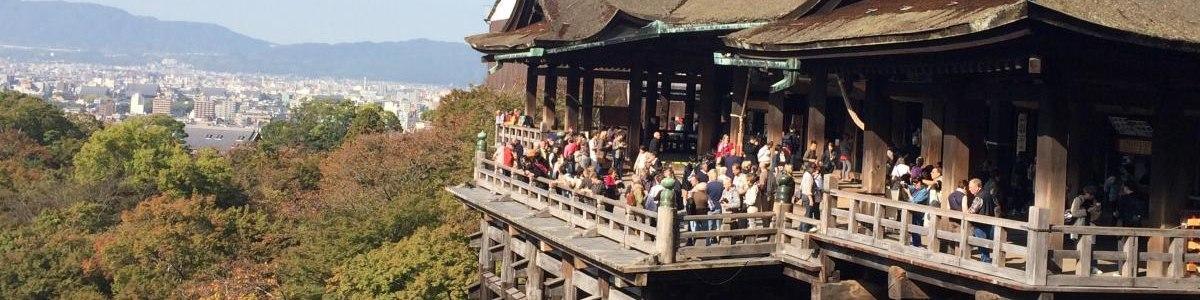 tokyo-tour-guide
