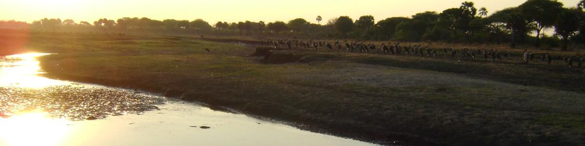 Elisomi-Tours-Ltd-in-Tanzania