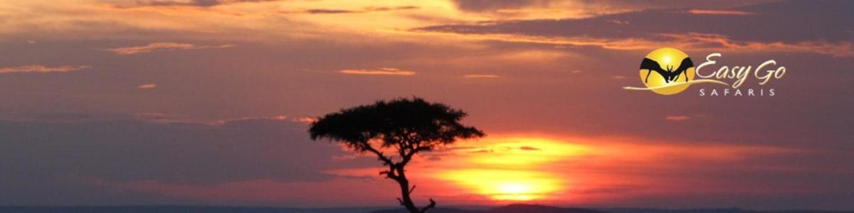 Easy-Go-Safaris-in-Kenya