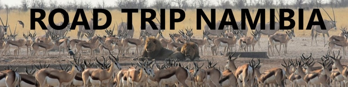 windhoek-tour-guide