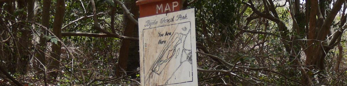 bijiloforestpark-tour-guide