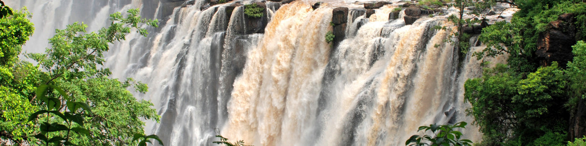 Willch-Travel-And-Tour-in-Zambia