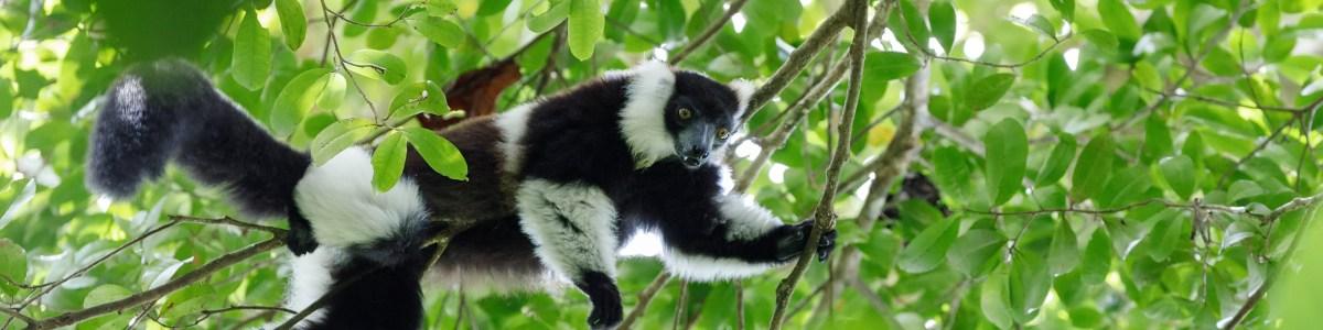Joelle-Razafindramiadana-in-Madagascar