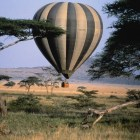 wambua-masaimara-tour-guide