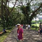 alvin-singapore-tour-guide