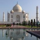 muhammadshujat-agra-tour-guide