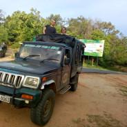 vijith-dambulla-tour-guide