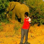 nyemolekuona-ruahanationalpark-tour-guide