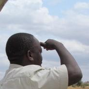 safari-mombasa-tour-guide