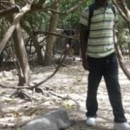 momodoud-serrekunda-tour-guide