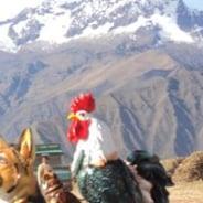 rudiarthfernando-cusco-tour-guide