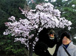 joe-taipei-tour-guide