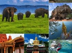 thushara-nuwaraeliya-tour-guide