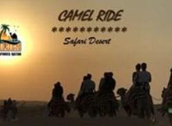 sharif.qtr101-doha-tour-guide
