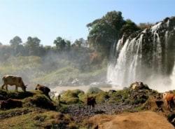 yilkal-bahirdar-tour-guide