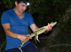 dustin-iquitos-tour-guide