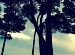 ghislain-moukalaba-doudounationalpark-tour-guide
