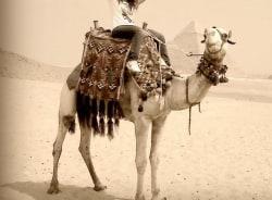 mary-cairo-tour-guide