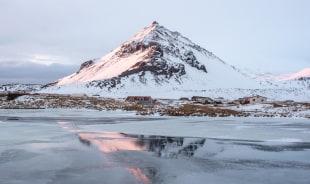 tyrfingur-reykjavik-tour-guide