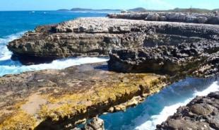 gordon-antiguaandbarbuda-tour-guide