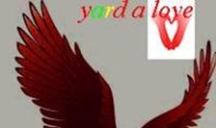 yarda-montegobay-tour-guide