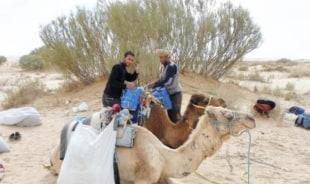 marwan-tunis-tour-guide