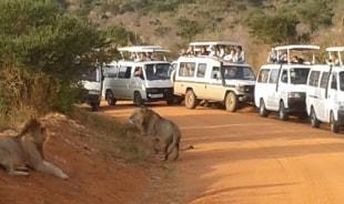 katama-malindi-tour-guide
