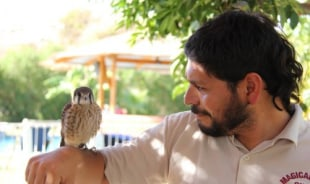 mauricio-puertomontt-tour-guide