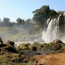 yilkalkindu-bahirdar-tour-guide