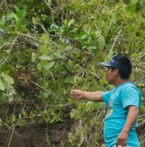 kidyahuarcaniricopa-iquitos-tour-guide
