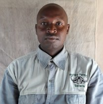 geemipaul-masaimara-tour-guide