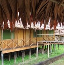 jinsonvalpepena-iquitos-tour-guide